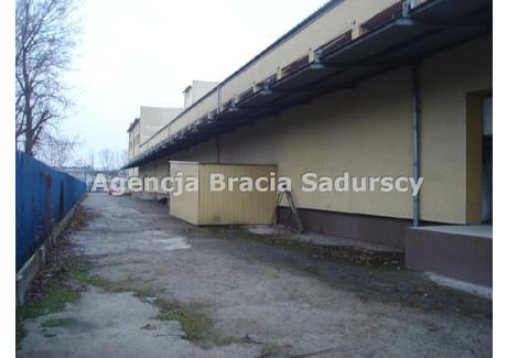 Magazyn do wynajęcia - Podgórze, Rybitwy, Kraków, Kraków M., 500 m², 10 250 PLN, NET-BS3-HW-93599
