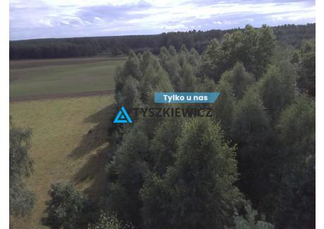 Działka na sprzedaż - Lisówko, Osiek, Starogardzki, 9200 m², 199 000 PLN, NET-TY362924
