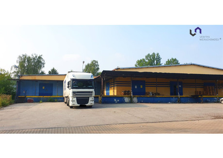Magazyn na sprzedaż - Dolina Trzech Stawów, Katowice, Katowice M., 3006 m², 5 100 000 PLN, NET-VTS-HS-3660