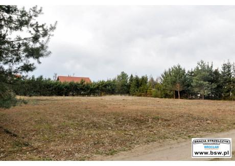 Działka na sprzedaż - Malerzów, Dobroszyce (gm.), Oleśnicki (pow.), 1491 m², 110 000 PLN, NET-GS-192
