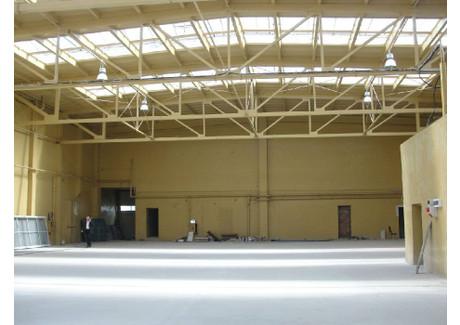 Fabryka, zakład do wynajęcia - Myszków, Myszkowski, 1000 m², 10 000 PLN, NET-ZUR-BW-1565