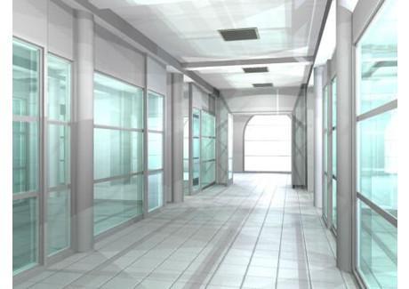 Lokal do wynajęcia - Centrum, Gliwice, Gliwice M., 500 m², 25 000 PLN, NET-ZUR-LW-1785