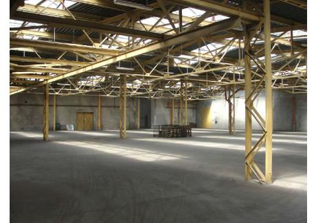 Magazyn na sprzedaż - Myszków, Myszkowski, 2000 m², 4 000 000 PLN, NET-ZUR-HS-1564