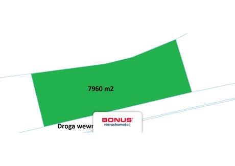 Działka na sprzedaż - Dąbie, Szczecin, 7960 m², 1 990 000 PLN, NET-BON29424