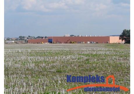 Działka na sprzedaż - Ustowo, Kołbaskowo, Policki, 50 000 m², 9 500 000 PLN, NET-KOM06713