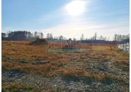 Działka na sprzedaż - Sade Budy, Jaktorów, Grodziski, 3000 m², 620 000 PLN, NET-154/6166/OGS
