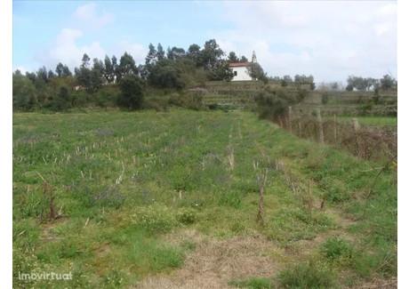 Działka na sprzedaż - Galegos (São Martinho), Portugalia, 6300 m², 157 500 Euro (674 100 PLN), NET-51270820