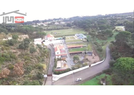 Działka na sprzedaż - Chamusca E Pinheiro Grande, Portugalia, 70 000 m², 750 000 Euro (3 232 500 PLN), NET-45443528
