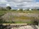 Działka na sprzedaż - Montijo, Portugalia, 306 m², 29 000 Euro (131 950 PLN), NET-69483437