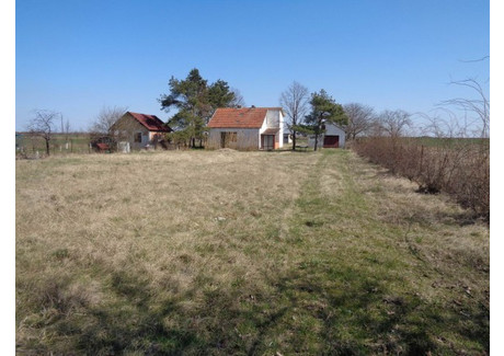Dom na sprzedaż - Selište Perlez, Serbia, 110 m², 19 000 Euro (87 020 PLN), NET-40639837