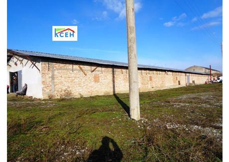 Fabryka, zakład na sprzedaż - Промишлена зона/Promishlena zona Търговище/targovishte, Bułgaria, 11 700 m², 550 000 BGN (1 204 500 PLN), NET-48892201