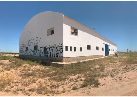 Komercyjne na sprzedaż - Balsicas, Hiszpania, 1000 m², 480 000 Euro (2 193 600 PLN), NET-60053819
